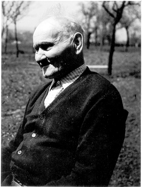 Dominik Daniš (1874-1964)